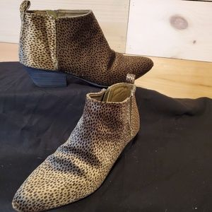 Spotted Print ankle high boots